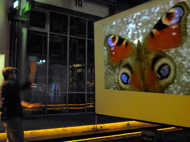 "Interaktive Videoinstallation ""WINNG"""